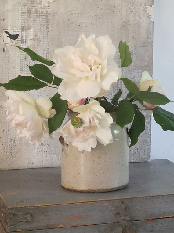 Madame Alfred Carriere roses, the first of the season, in a stoneware preserving jar. The painting is by my sister-in-law, Jessica Zoob.