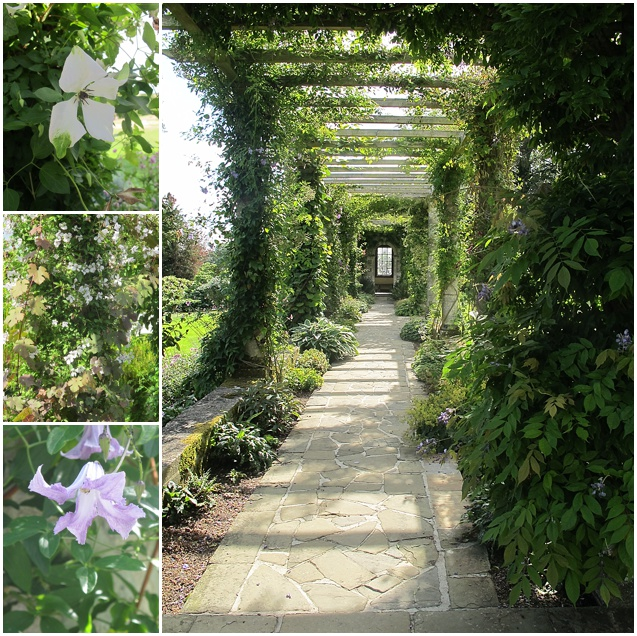 The Harold Peto Pergola at West Dean Gardens